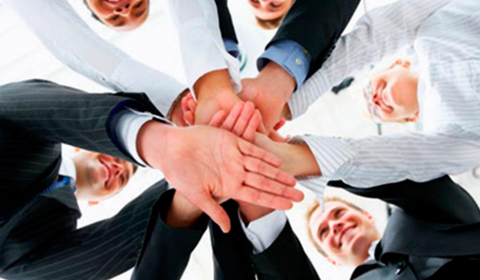 Sinergia y Equipos de Trabajo